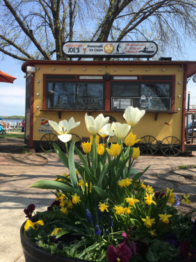 Springtime at The Trolley
