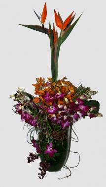 Memorial Flowers, Tropical