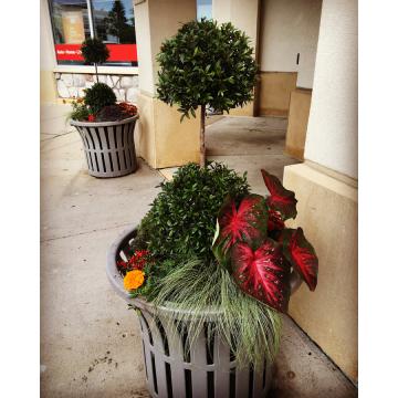 Autumn Commercial Planters