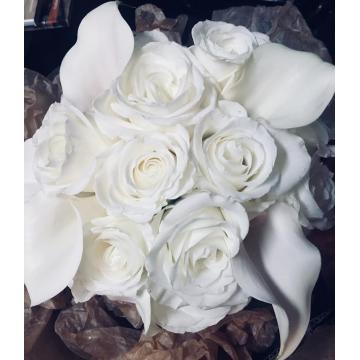 Purest White
